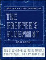 De Prepper's Blueprint