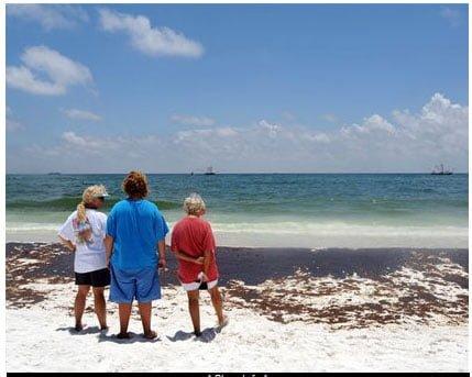Pensacola Beach Oil