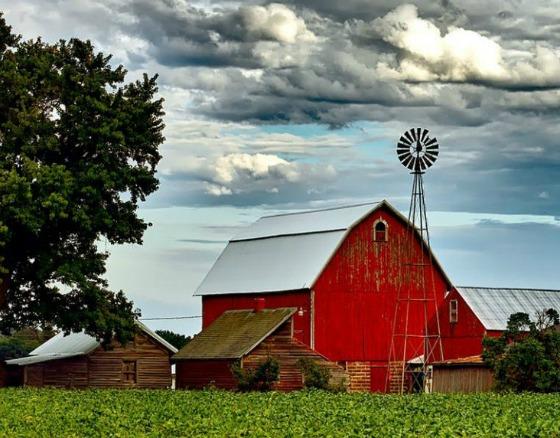 3 Tips: How To Start A Self-Sustaining Homestead Homestead-farm